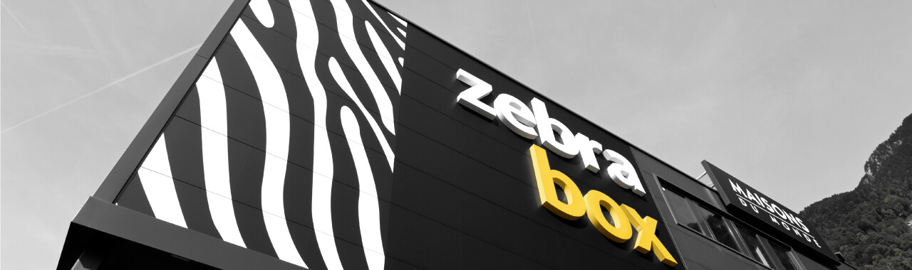 Construction de Zebrabox