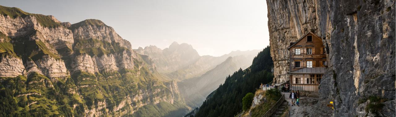 In die Schweiz ziehen