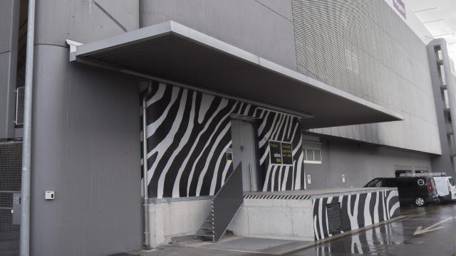 Eingang Zebrabox Spreitenbach
